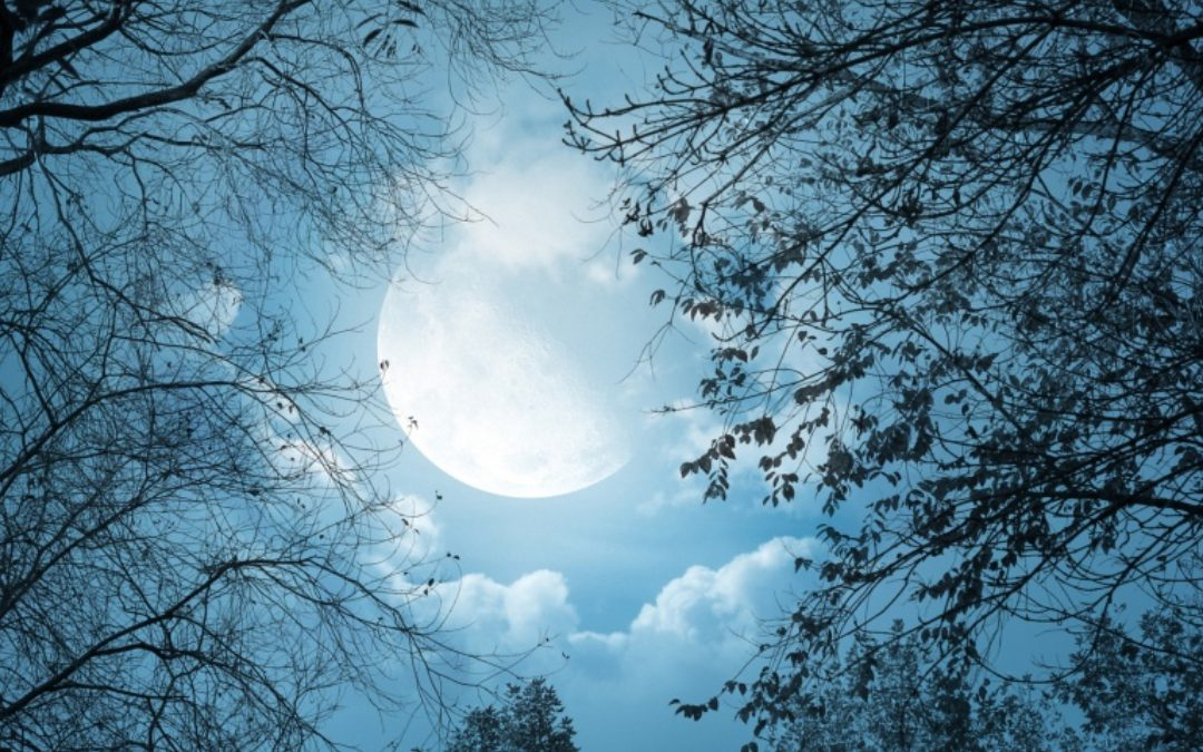 November 2018 – Full Moon in Gemini